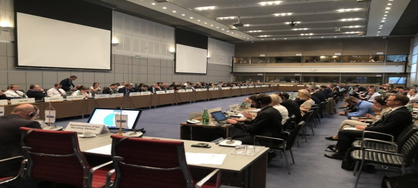 THE DELEGATION OF TURKMENISTAN TO THE OSCE MADE A STATEMENT ON THE OUTCOME OF THE SUMMIT OF HEADS OF CIS PARTICIPATING STATES IN ASHGABAT
